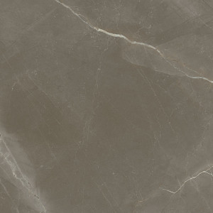 1804 Gris Polished Rectified 98x98cm