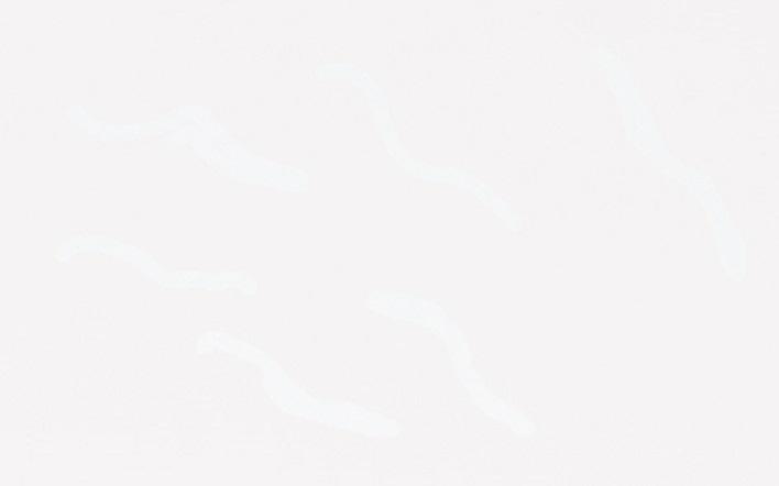 Bumpy-White 25x40cm